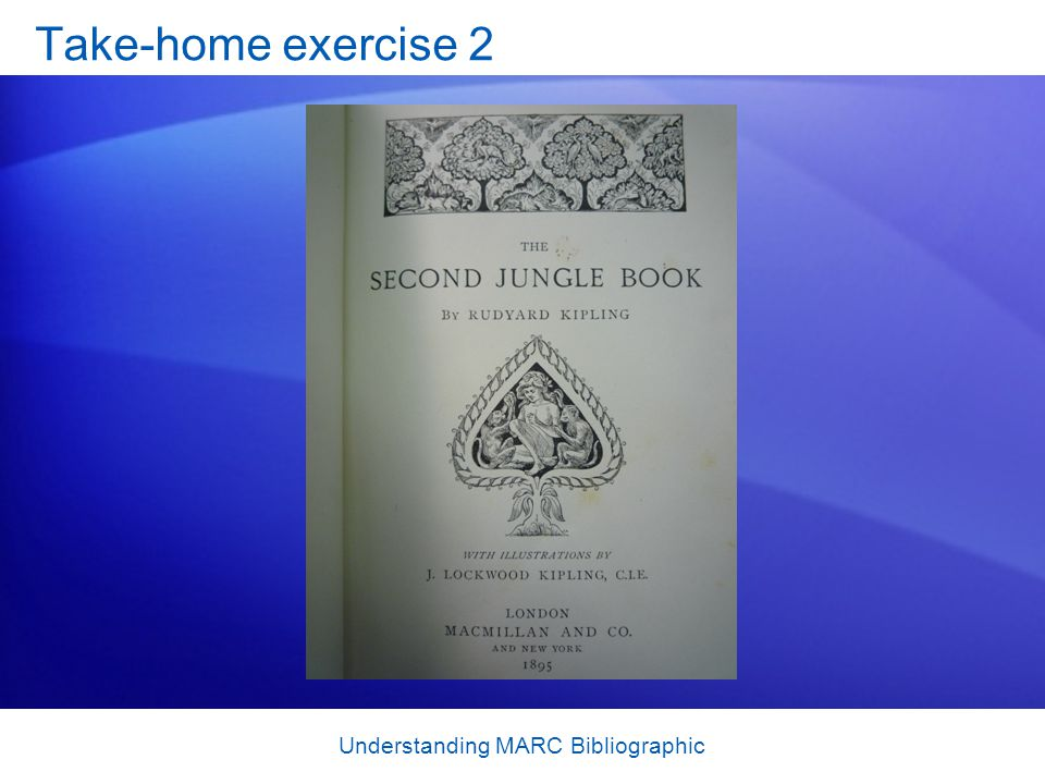 Understanding MARC Bibliographic Take-home exercise 2