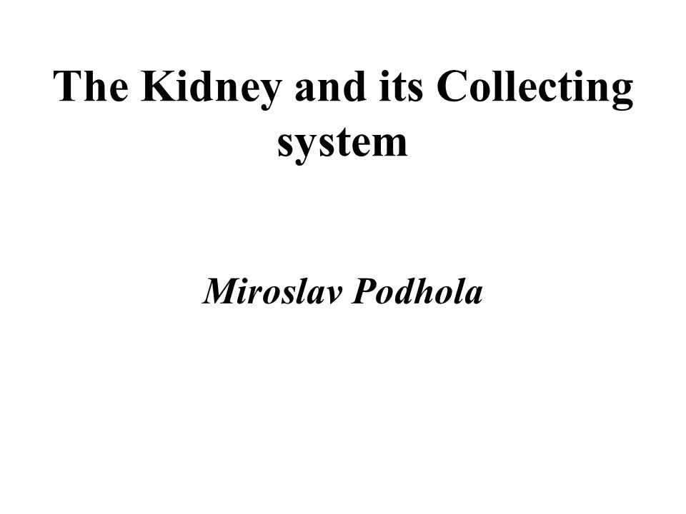 The Kidney and its Collecting system Miroslav Podhola