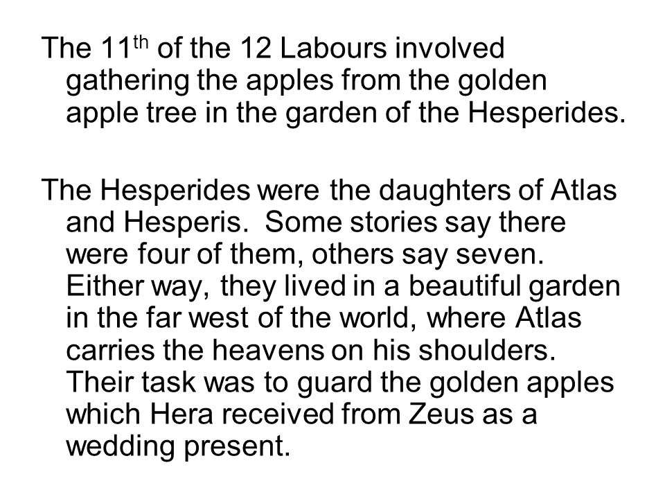 The 11 th of the 12 Labours involved gathering the apples from the golden apple tree in the garden of the Hesperides.