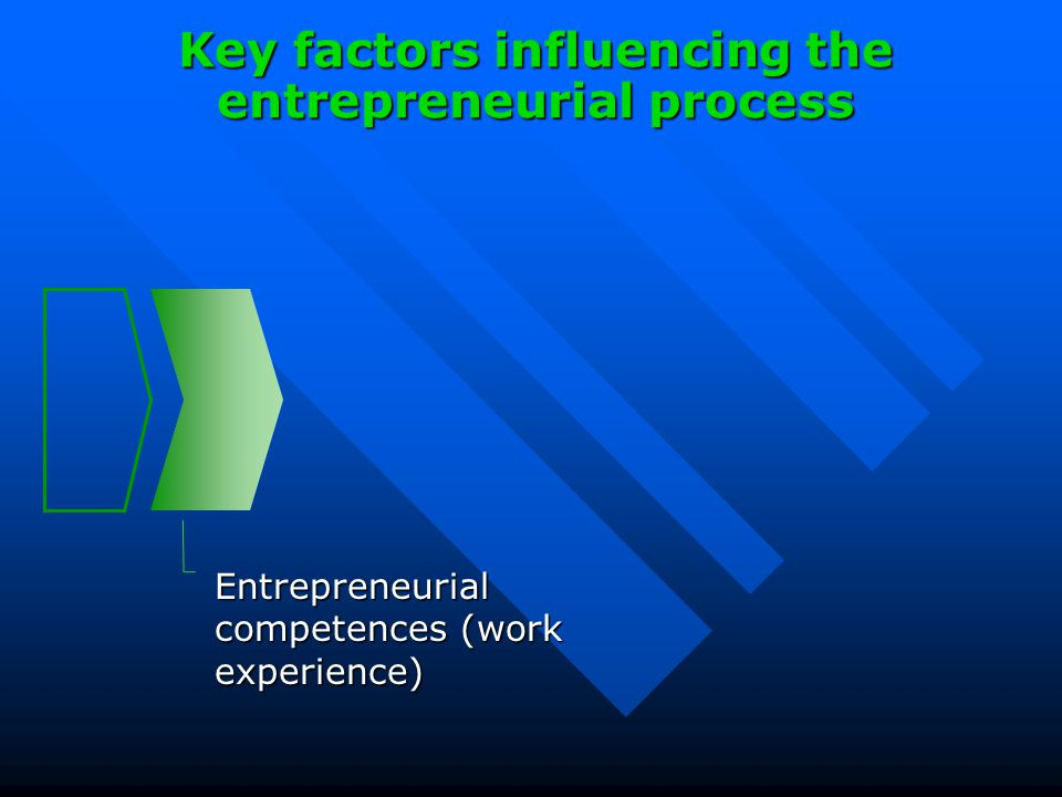 Entrepreneurial competences (work experience) Key factors influencing the entrepreneurial process