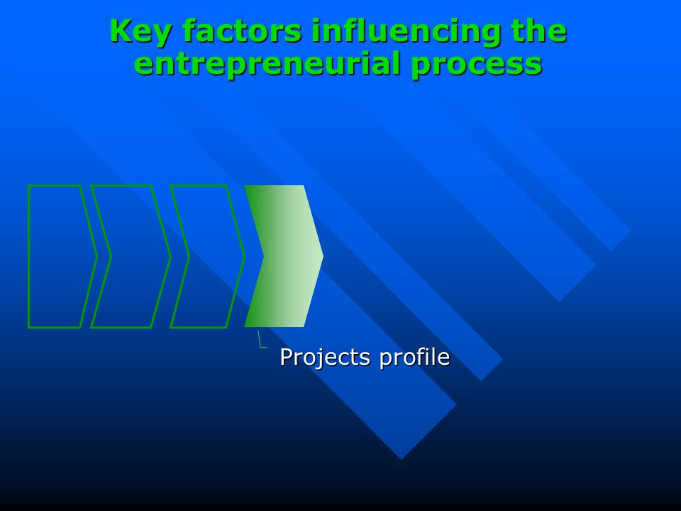 Projects profile Key factors influencing the entrepreneurial process