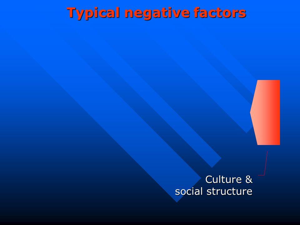 Typical negative factors Culture & social structure