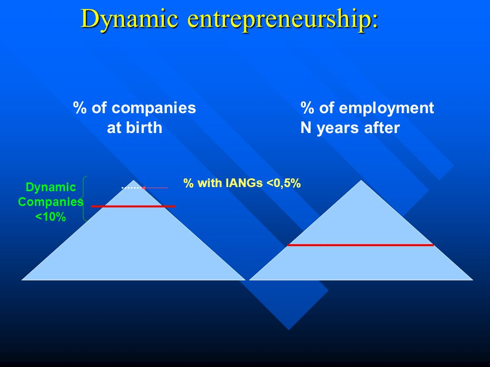 Dynamic entrepreneurship: % of companies at birth % of employment N years after % with IANGs <0,5% Dynamic Companies <10%