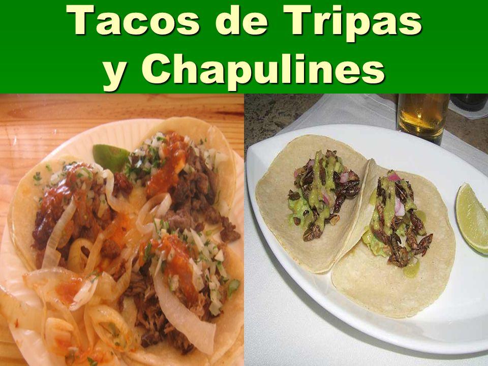 Tacos de Tripas y Chapulines