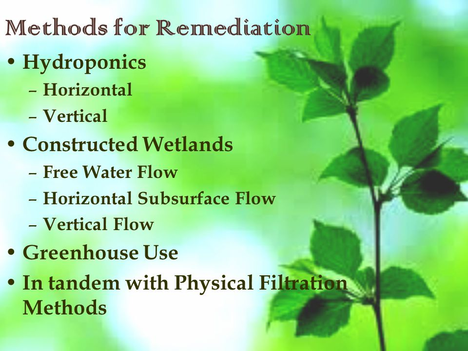 Methods for Remediation Hydroponics – Horizontal – Vertical Constructed Wetlands – Free Water Flow – Horizontal Subsurface Flow – Vertical Flow Greenhouse Use In tandem with Physical Filtration Methods