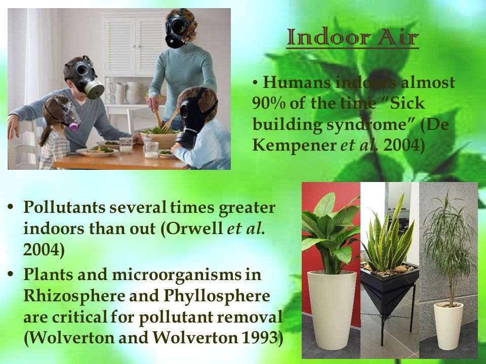 Indoor Air Pollutants several times greater indoors than out (Orwell et al.