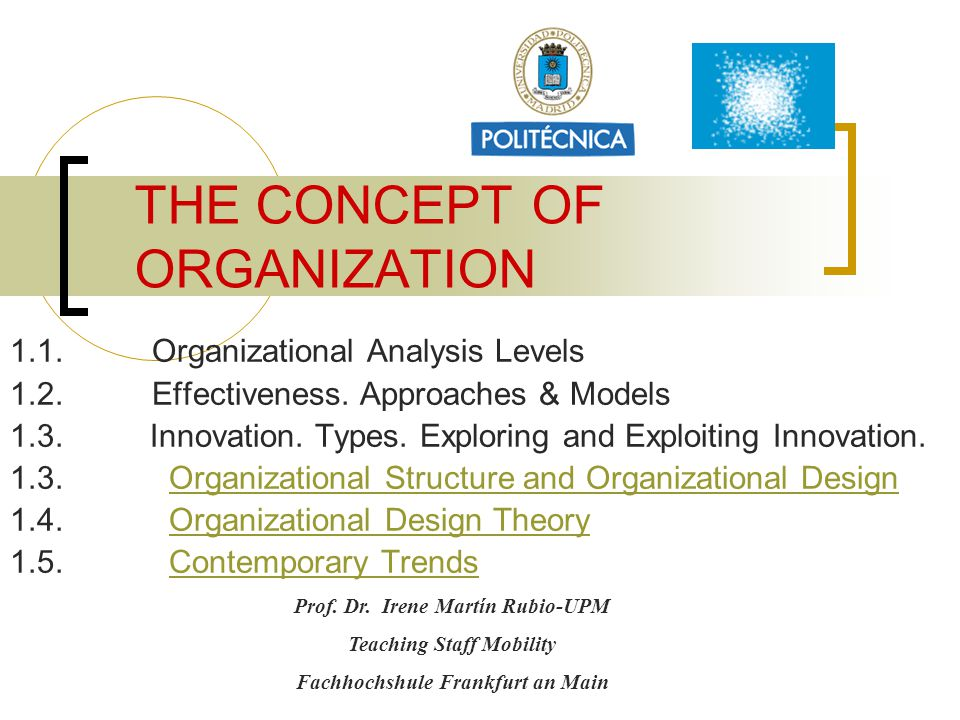 THE CONCEPT OF ORGANIZATION 1.1.Organizational Analysis Levels 1.2.