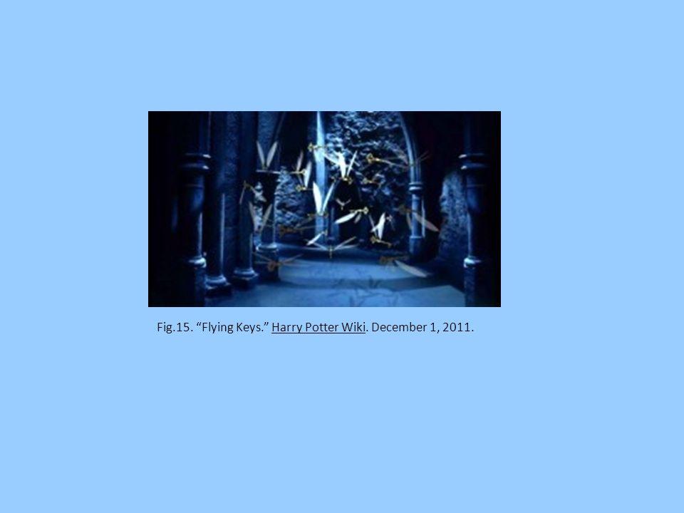 Fig.14. Devil's Snare Harry Potter Wiki. December 1, 2011.