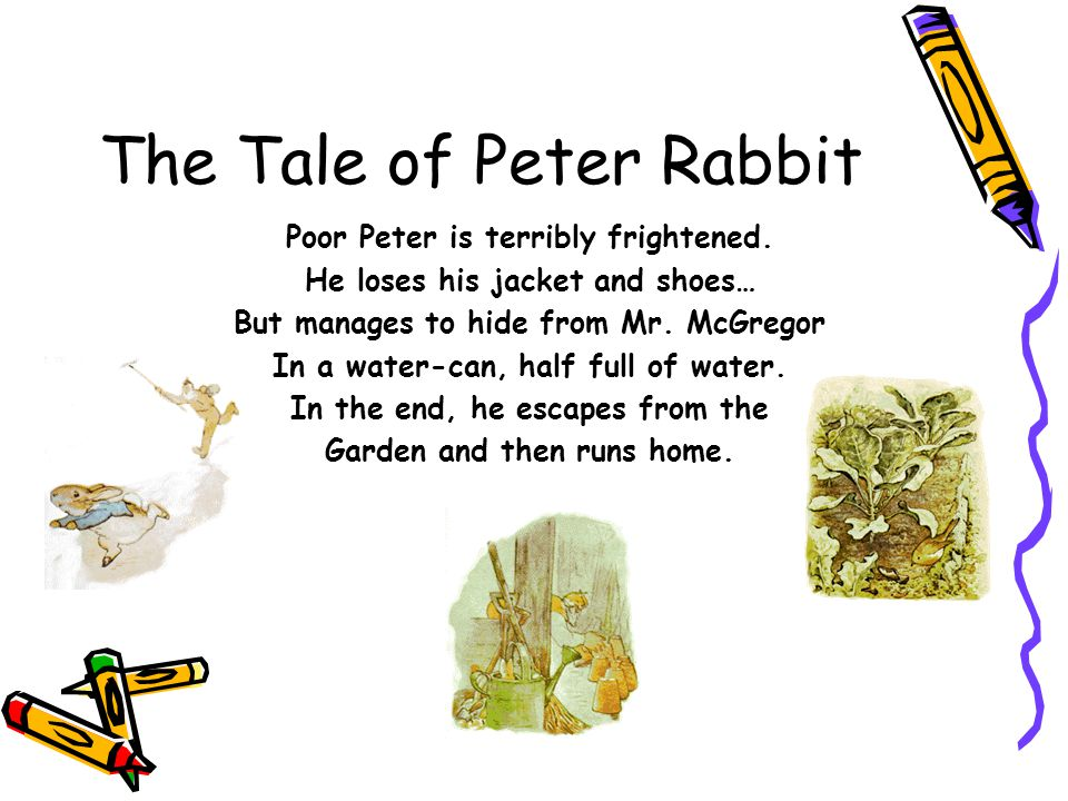 The Tale of Peter Rabbit Poor Peter is terribly frightened. He loses his jacket and shoes… But manages to hide from Mr. McGregor In a water-can, half
