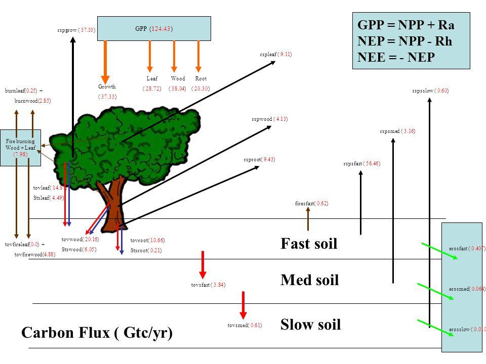 Carbon Flux ( Gtc/yr) rspleaf ( 9.11) rspwood ( 4.13) rsproot( 9.43) rspsfast ( 56.46) rspsmed ( 3.16) rspsslow ( 0.60) tovsfast ( 3.84) tovsmed( 0.61) tovleaf( 14.87) Stsleaf( 4.49) tovwood( 20.16) Stswood( 6.05) tovroot( 10.66) Stsroot( 0.21) rspgrow ( 37.33) firesfast( 0.62) Fast soil Med soil Slow soil Fire burning Wood + Leaf (7.98) burnleaf(0.25) + burnwood(2.85) tovfireleaf(0.0) + tovfirewood(4.88) erosslow ( 0.010) erosfast ( 0.407) erosmed( 0.064) GPP (124.43) Growth ( 37.33) Leaf ( 28.72) Wood ( 38.04) Root ( 20.30) GPP = NPP + Ra NEP = NPP - Rh NEE = - NEP
