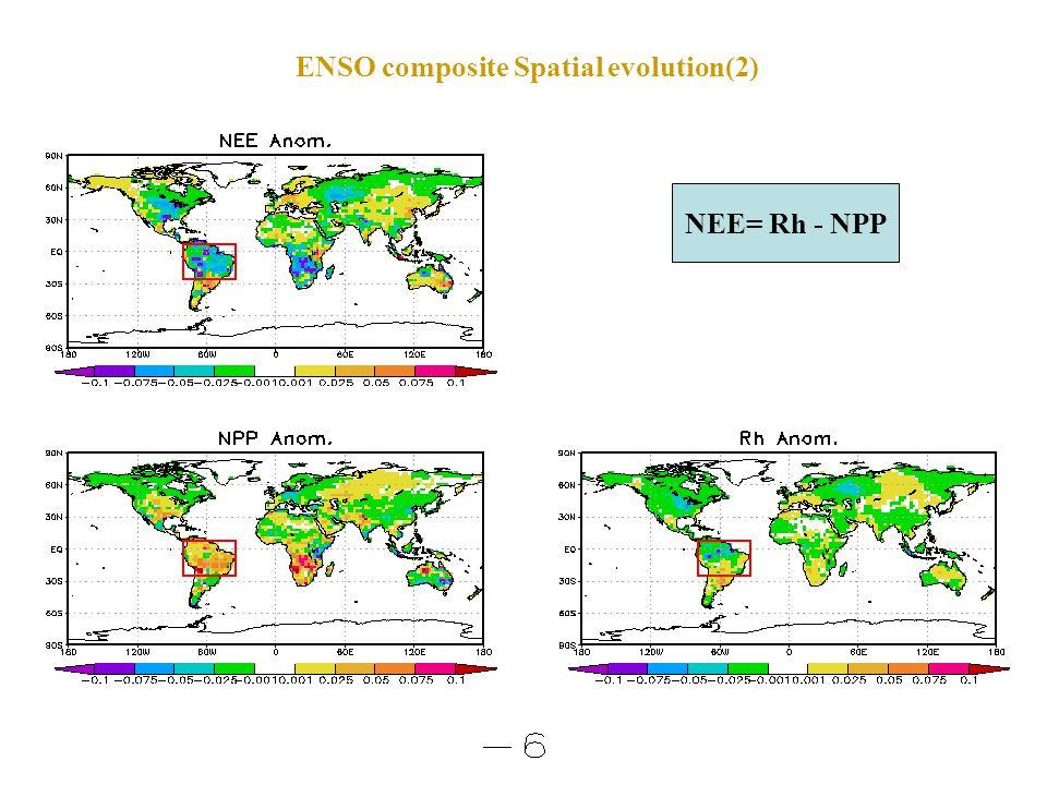 ENSO composite Spatial evolution(2) NEE= Rh - NPP