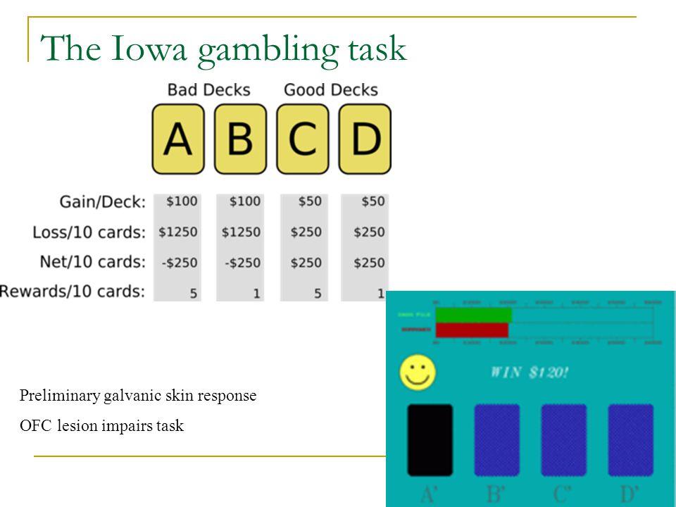 The Iowa gambling task Preliminary galvanic skin response OFC lesion impairs task