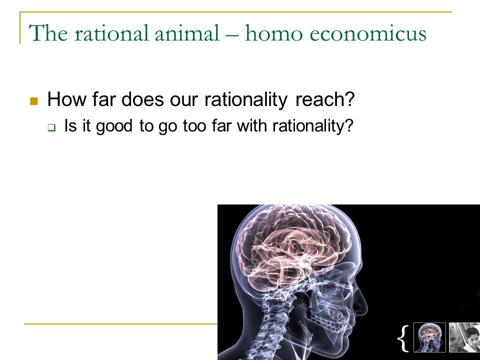 The rational animal – homo economicus How far does our rationality reach.