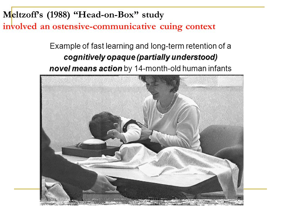 Meltzoff's (1988) Head-on-Box study involved an ostensive-communicative cuing context Example of fast learning and long-term retention of a cognitively opaque (partially understood) novel means action novel means action by 14-month-old human infants