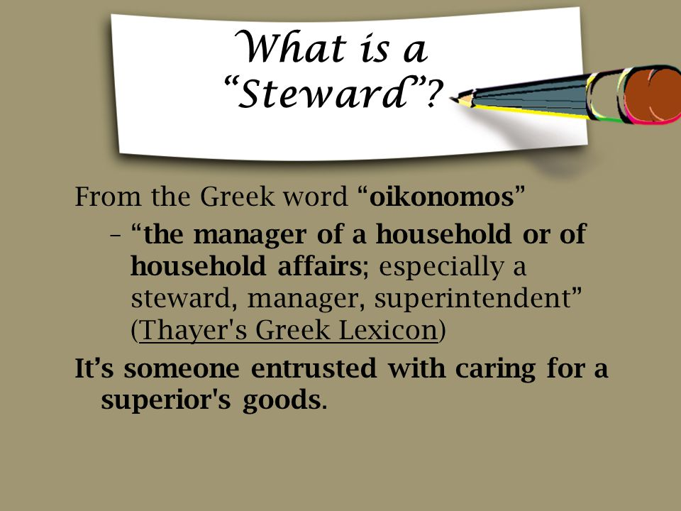 What is a Steward .