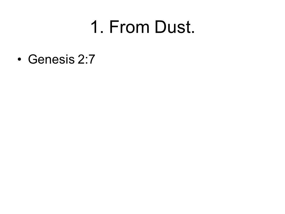 1. From Dust. Genesis 2:7