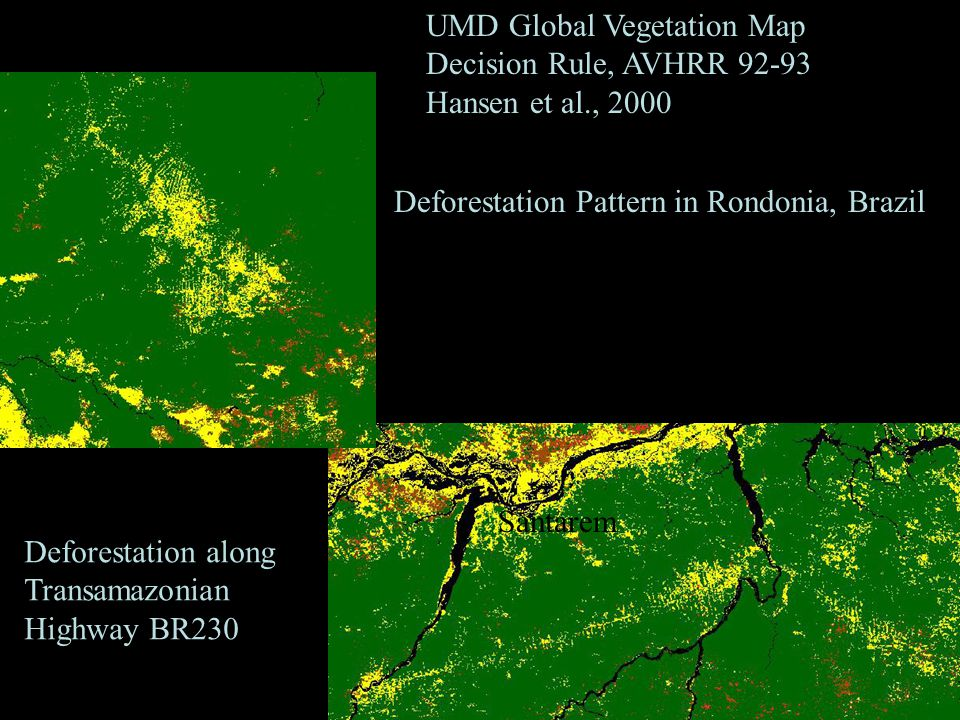 Deforestation Pattern in Rondonia, Brazil Santarem Deforestation along Transamazonian Highway BR230 UMD Global Vegetation Map Decision Rule, AVHRR Hansen et al., 2000 Santarem