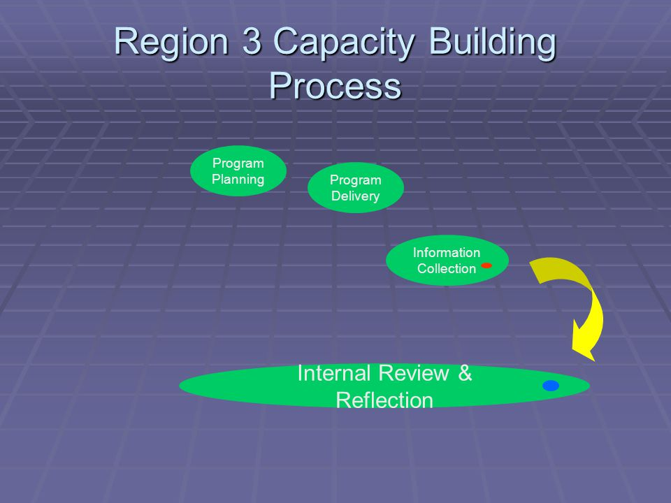 Region 3 Capacity Building Process Program Planning Program Delivery Internal Review & Reflection Information Collection