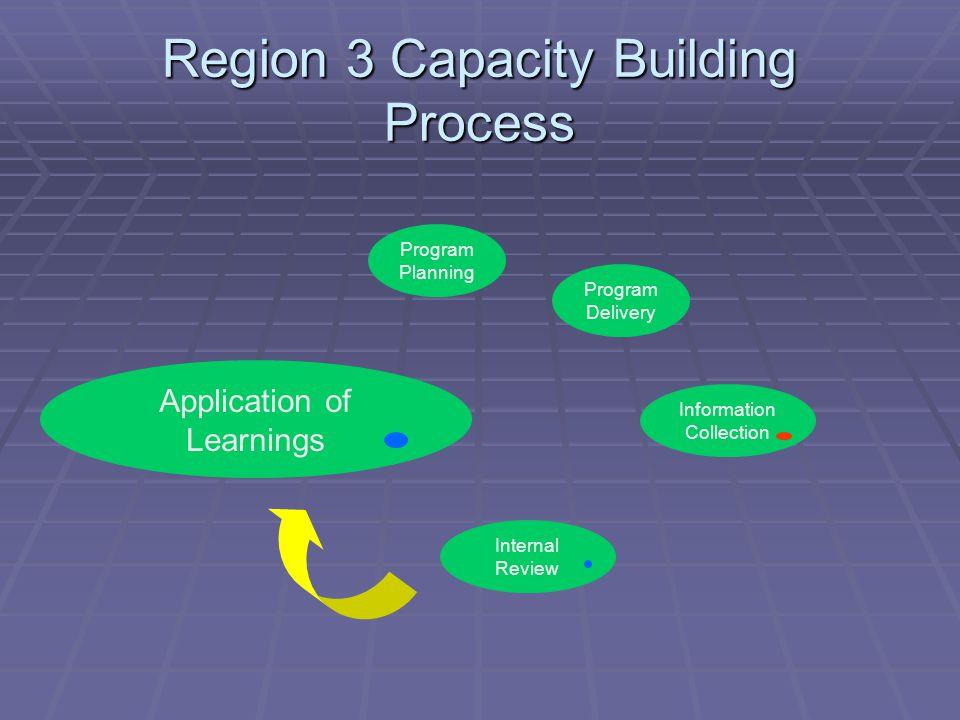 Region 3 Capacity Building Process Program Planning Program Delivery Application of Learnings Information Collection Internal Review