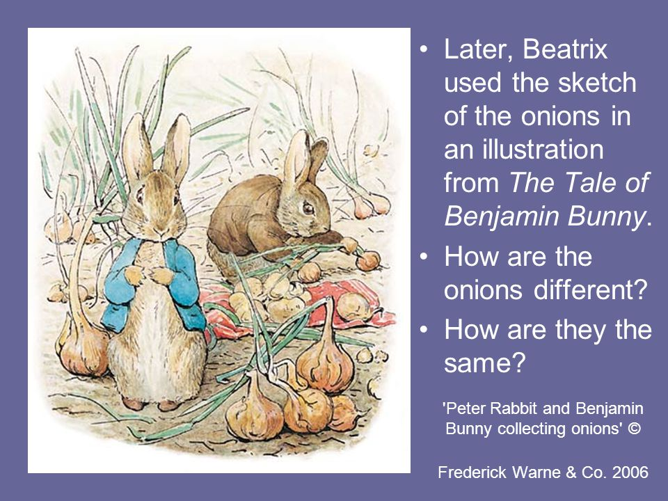 Peter Rabbit and Benjamin Bunny collecting onions © Frederick Warne & Co.