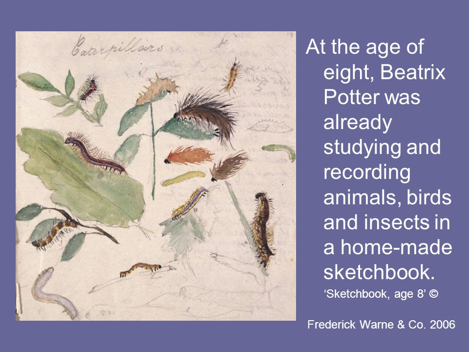 'Sketchbook, age 8' © Frederick Warne & Co.