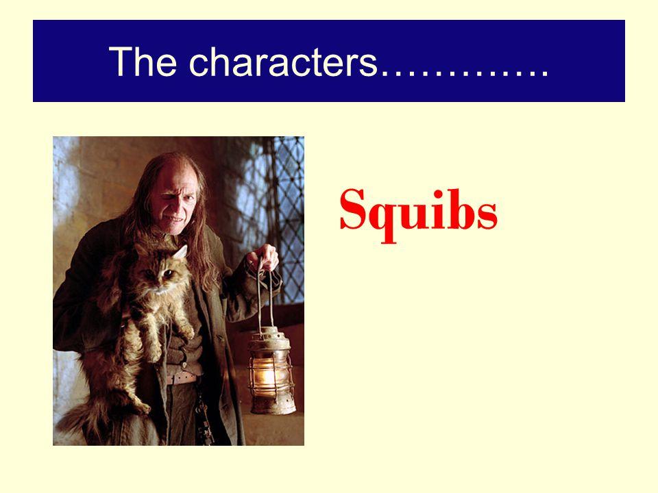 And finally…………. Muggles!