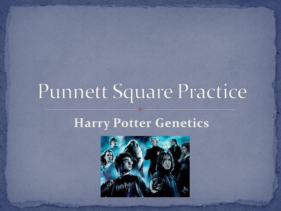 Harry Potter Genetics