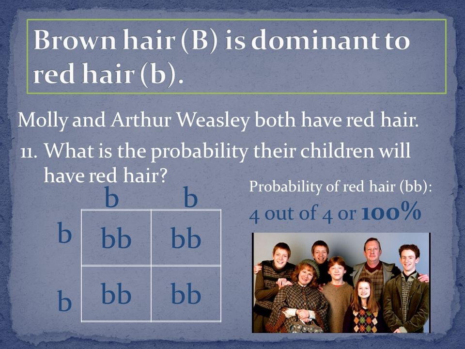 Molly and Arthur Weasley both have red hair. bb b 11. What is the probability their children will have red hair? Probability of red hair (bb): 4 out o