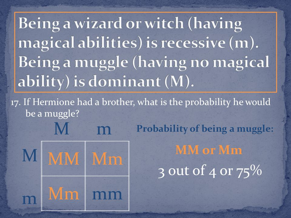 17. If Hermione had a brother, what is the probability he would be a muggle? MMMm mm MmMm M m Probability of being a muggle: MM or Mm 3 out of 4 or 75