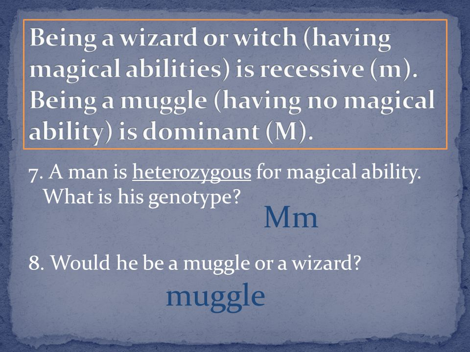 7. A man is heterozygous for magical ability. What is his genotype? Mm 8. Would he be a muggle or a wizard? muggle