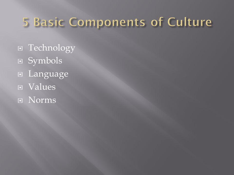  Technology  Symbols  Language  Values  Norms