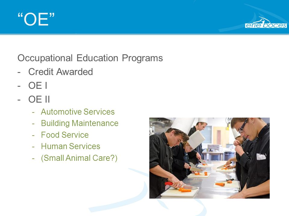OE Occupational Education Programs -Credit Awarded -OE I -OE II -Automotive Services -Building Maintenance -Food Service -Human Services -(Small Animal Care?)