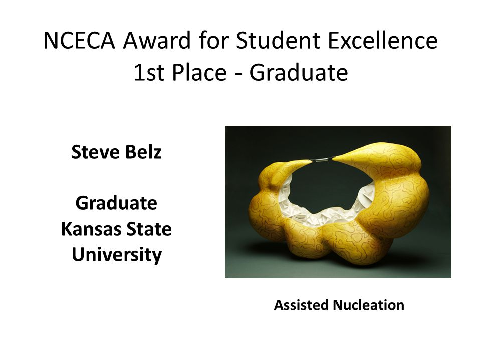 NCECA Award for Student Excellence 1st Place - Graduate Assisted Nucleation Steve Belz Graduate Kansas State University