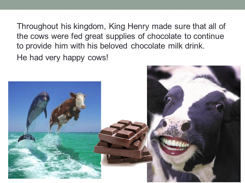 Throughout his kingdom, King Henry made sure that all of the cows were fed great supplies of chocolate to continue to provide him with his beloved chocolate milk drink.