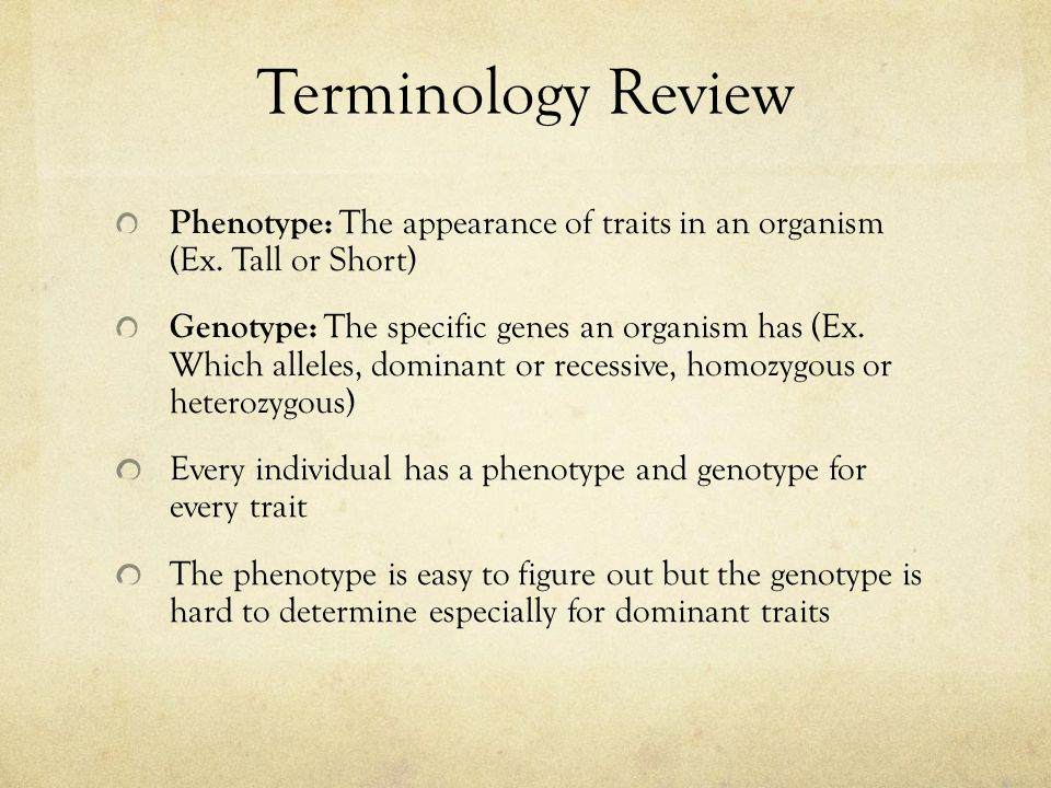 Terminology Review Phenotype: The appearance of traits in an organism (Ex. Tall or Short) Genotype: The specific genes an organism has (Ex. Which alle