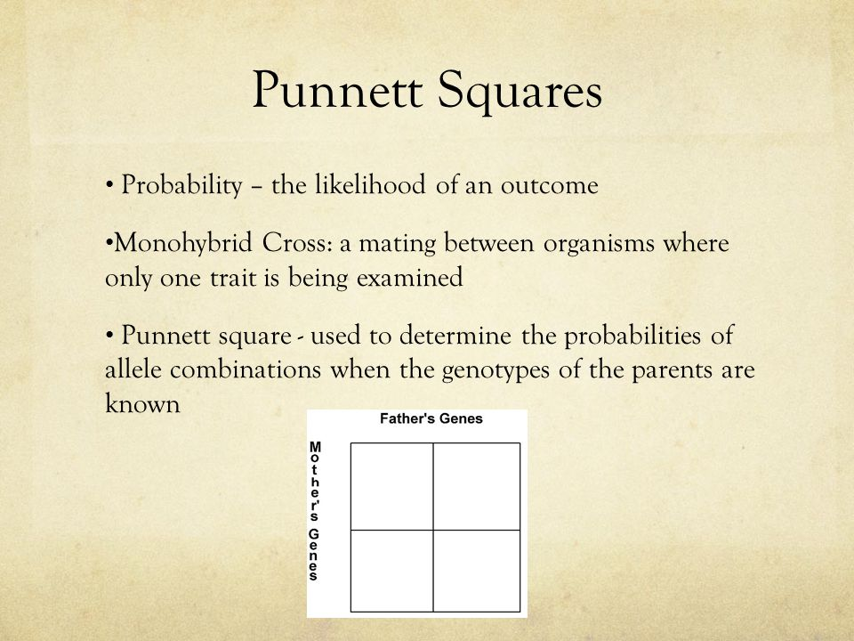 Punnett Squares Probability – the likelihood of an outcome Monohybrid Cross: a mating between organisms where only one trait is being examined Punnett