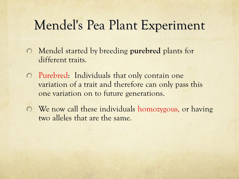 Mendel's Pea Plant Experiment Mendel started by breeding purebred plants for different traits. Purebred: Individuals that only contain one variation o