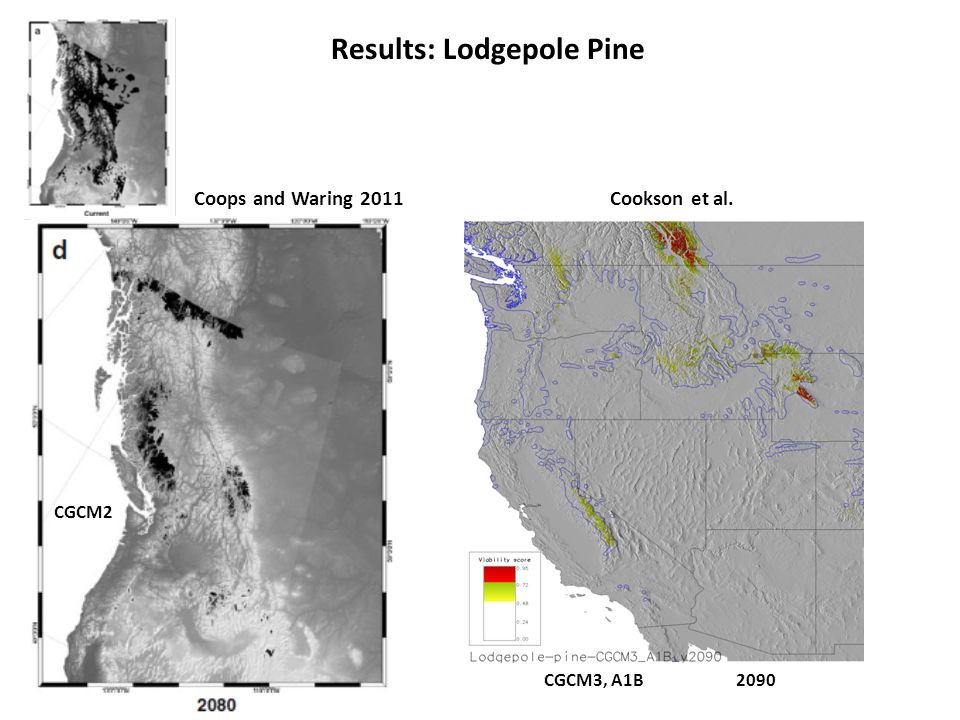 Results: Lodgepole Pine Coops and Waring 2011 CGCM2 CGCM3, A1B2090 Cookson et al.