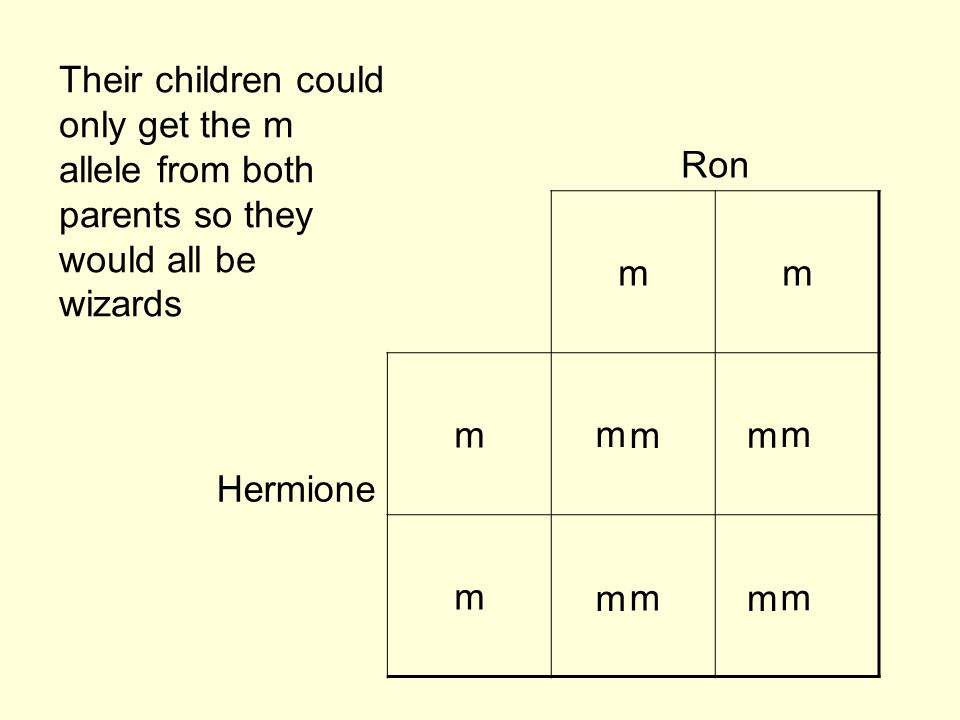 Ron mm Hermione m m Their children could only get the m allele from both parents so they would all be wizards m m m m m m m m