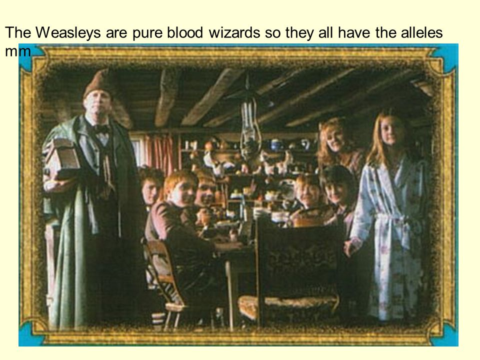 The Weasleys are pure blood wizards so they all have the alleles mm