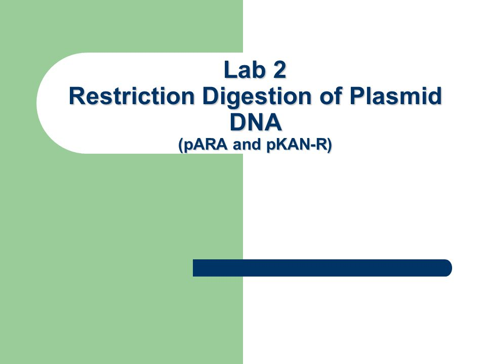 Lab 2 Restriction Digestion of Plasmid DNA (pARA and pKAN-R) Lab 2
