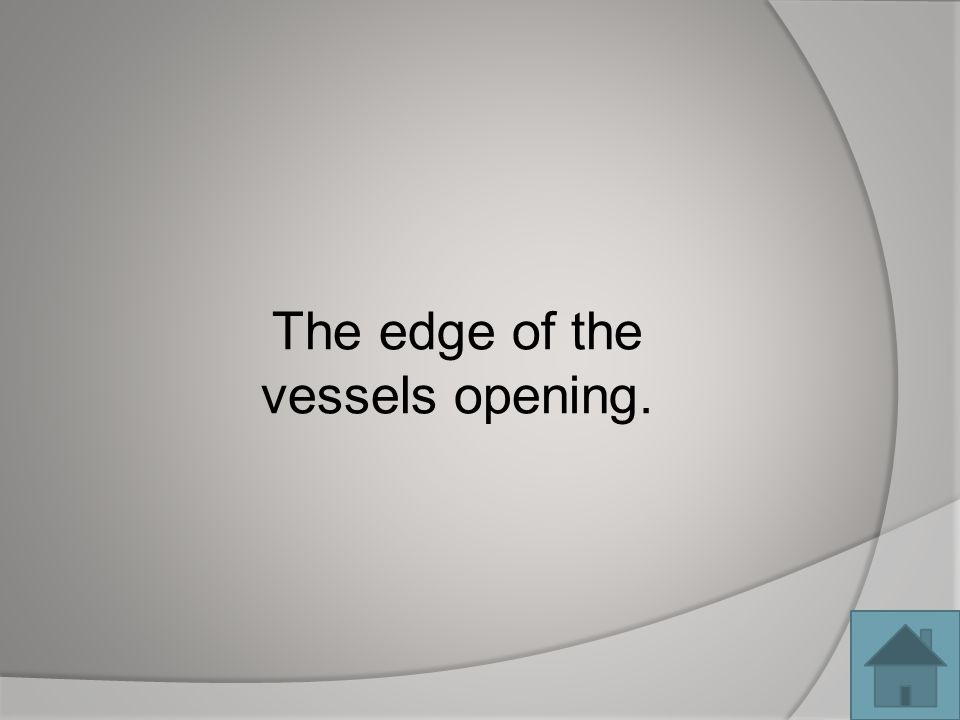 The edge of the vessels opening.