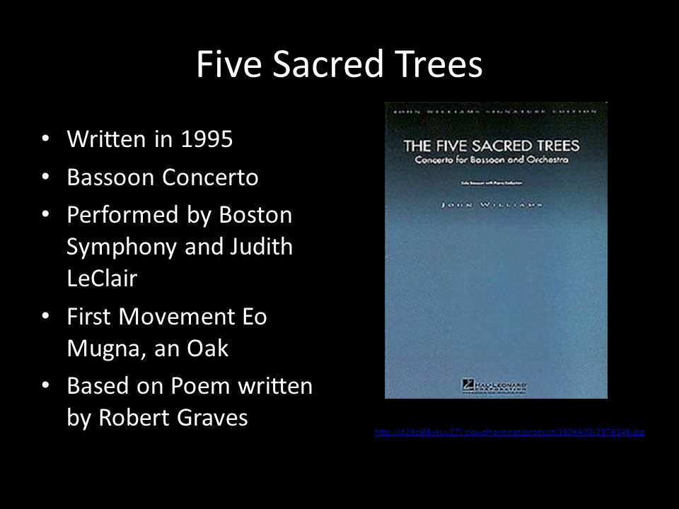 Five Sacred Trees Written in 1995 Bassoon Concerto Performed by Boston Symphony and Judith LeClair First Movement Eo Mugna, an Oak Based on Poem writt