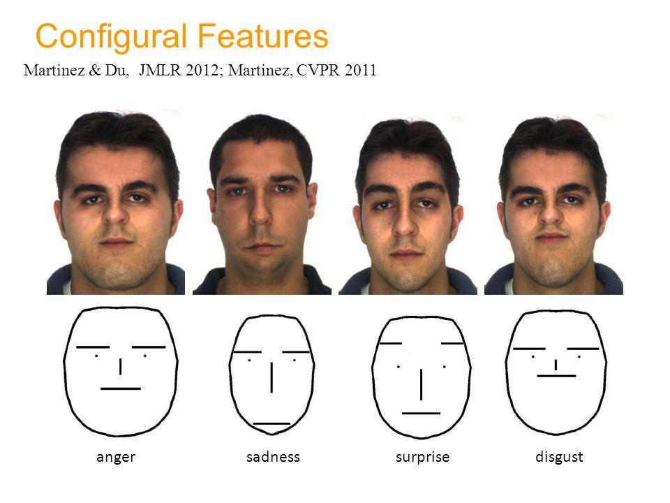 Configural Features Martinez & Du, JMLR 2012; Martinez, CVPR 2011 anger sadness surprise disgust