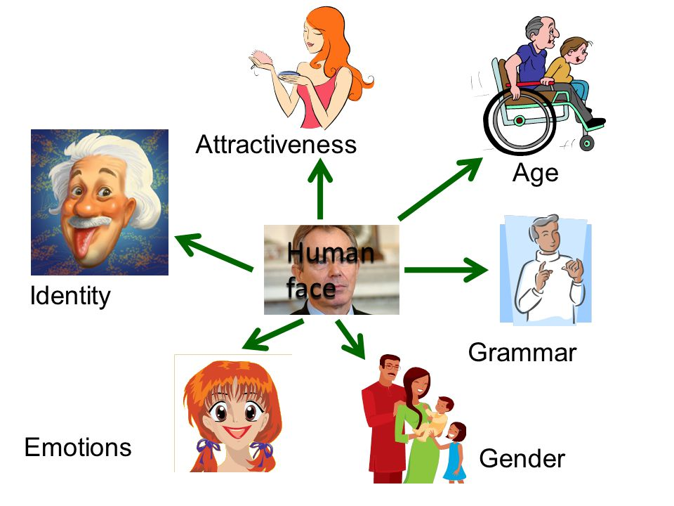 Identity Age Attractiveness Grammar Emotions Humanface Gender