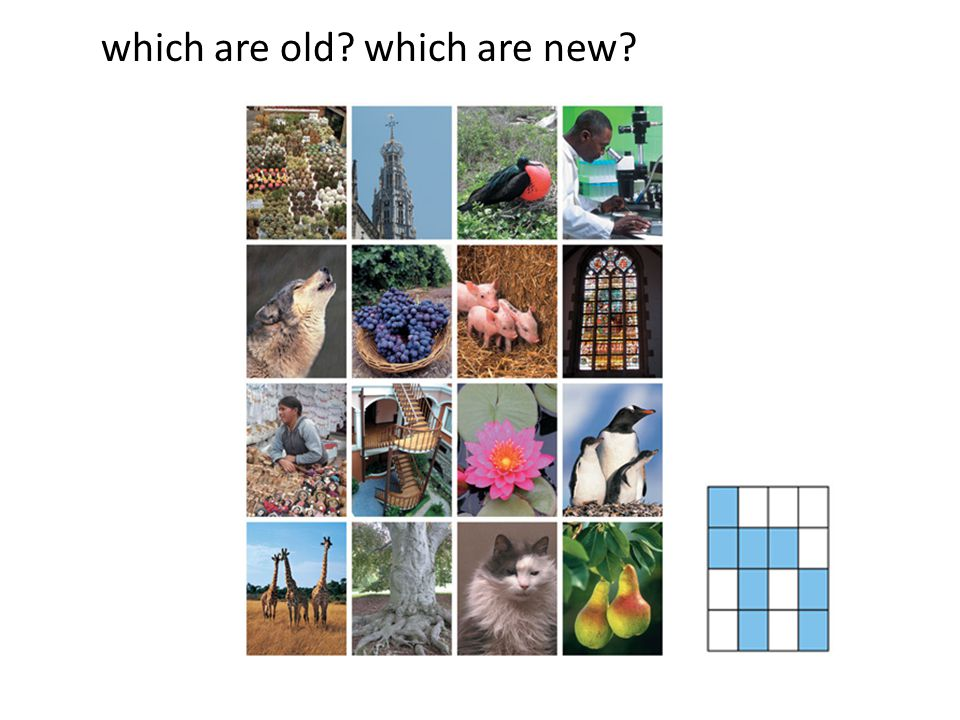 which are old which are new