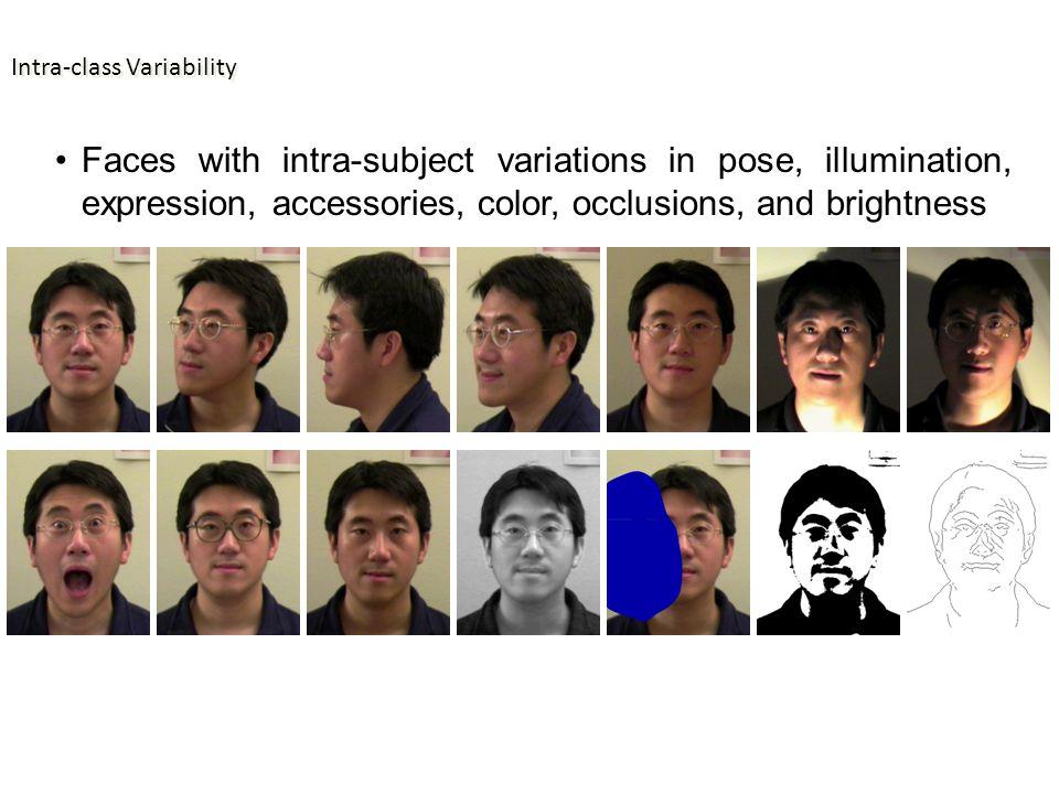 American Gothic Illusion Neth & Martinez, Vision Research, 2010