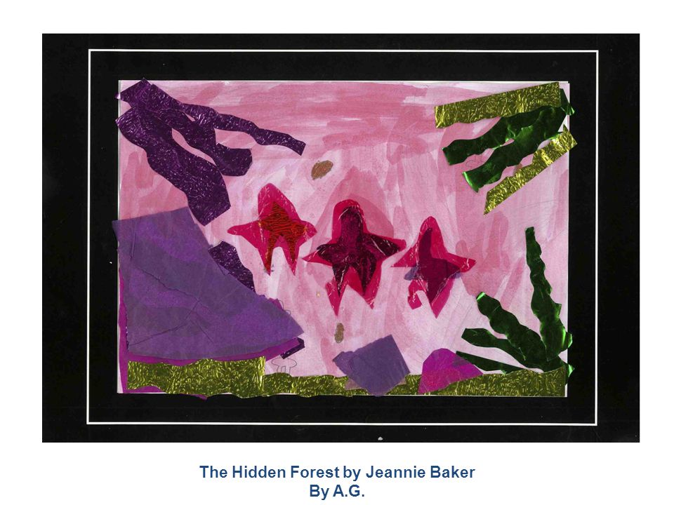 The Hidden Forest by Jeannie Baker By A.G.
