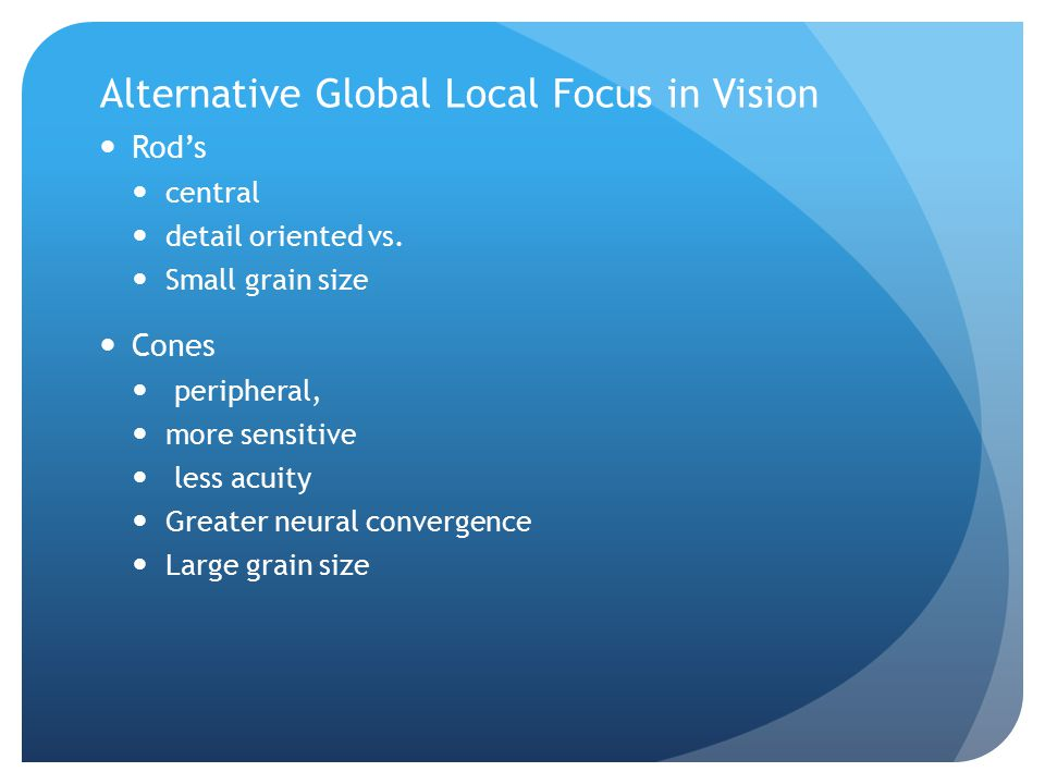 Alternative Global Local Focus in Vision Rod's central detail oriented vs.