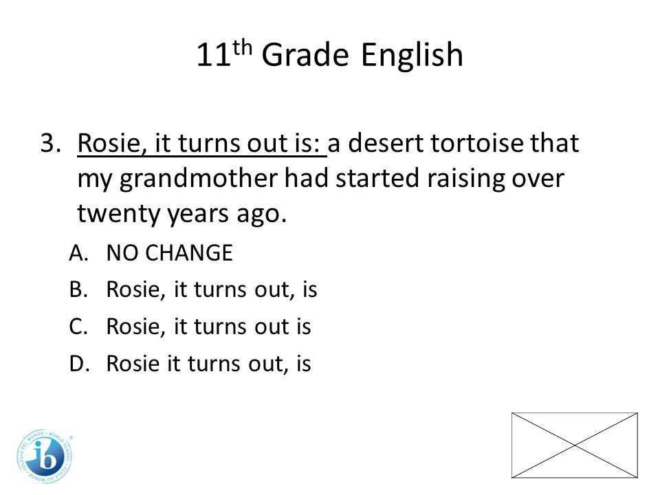 11 th Grade English 3.Rosie, it turns out is: a desert tortoise that my grandmother had started raising over twenty years ago.